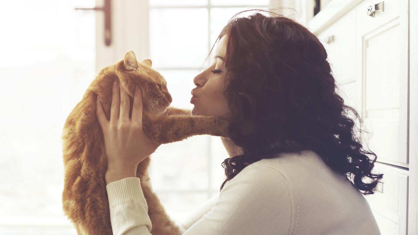 Cinco trucos que arreglarán la convivencia con tu gato